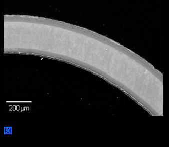 窒化処理を施した微小円筒(SUS304)の断面SEM写真